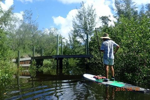 Mangrove FISH Preserve Eco Tour
