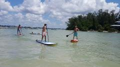 The Living Sandbar Paddle Adventure