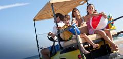 AMI Street Legal 4 Passenger Golf Cart Rental - Daily