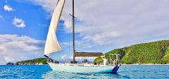 1/2 Day AM Snorkel Sail