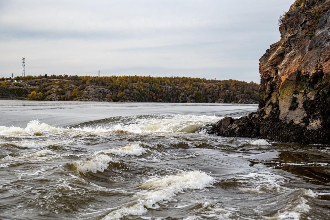 Saint John Reversing Falls Rapids Thrill Ride Jetboat