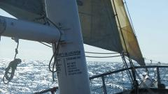 Mid-week Day Sail - Thursday 29th October
