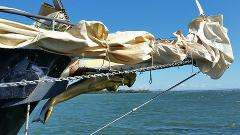 Bribie Island Day Sail Sunday 14th October