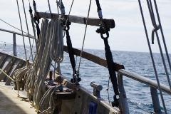 Moreton Bay Day Sail  Saturday 24th October