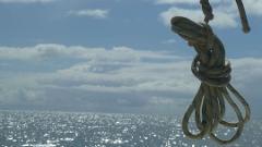 Moreton Bay Day Sail  Sunday 7th April