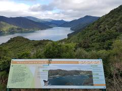 Mistletoe Bay to Anakiwa Day Walk