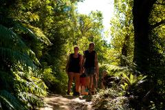 Motuara Island and One Day QCT Walk - Resolution Bay to Furneaux Lodge