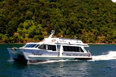 Cruise Ship Days Special - 2 hour Pet Fish Cruise