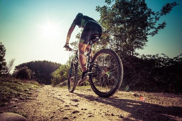 One Way - Mountain Bike Picton to Ship Cove
