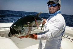 Mexican gulf fishing co offshore charter fishing for Mexican gulf fishing company