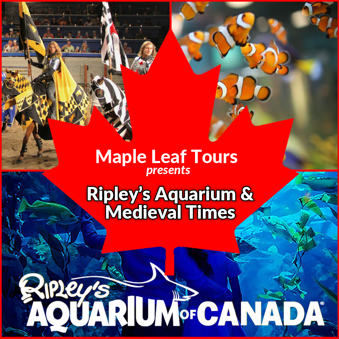 Ripley's & Medieval Times