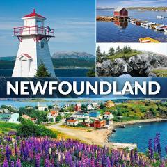 Newfoundland Adventure