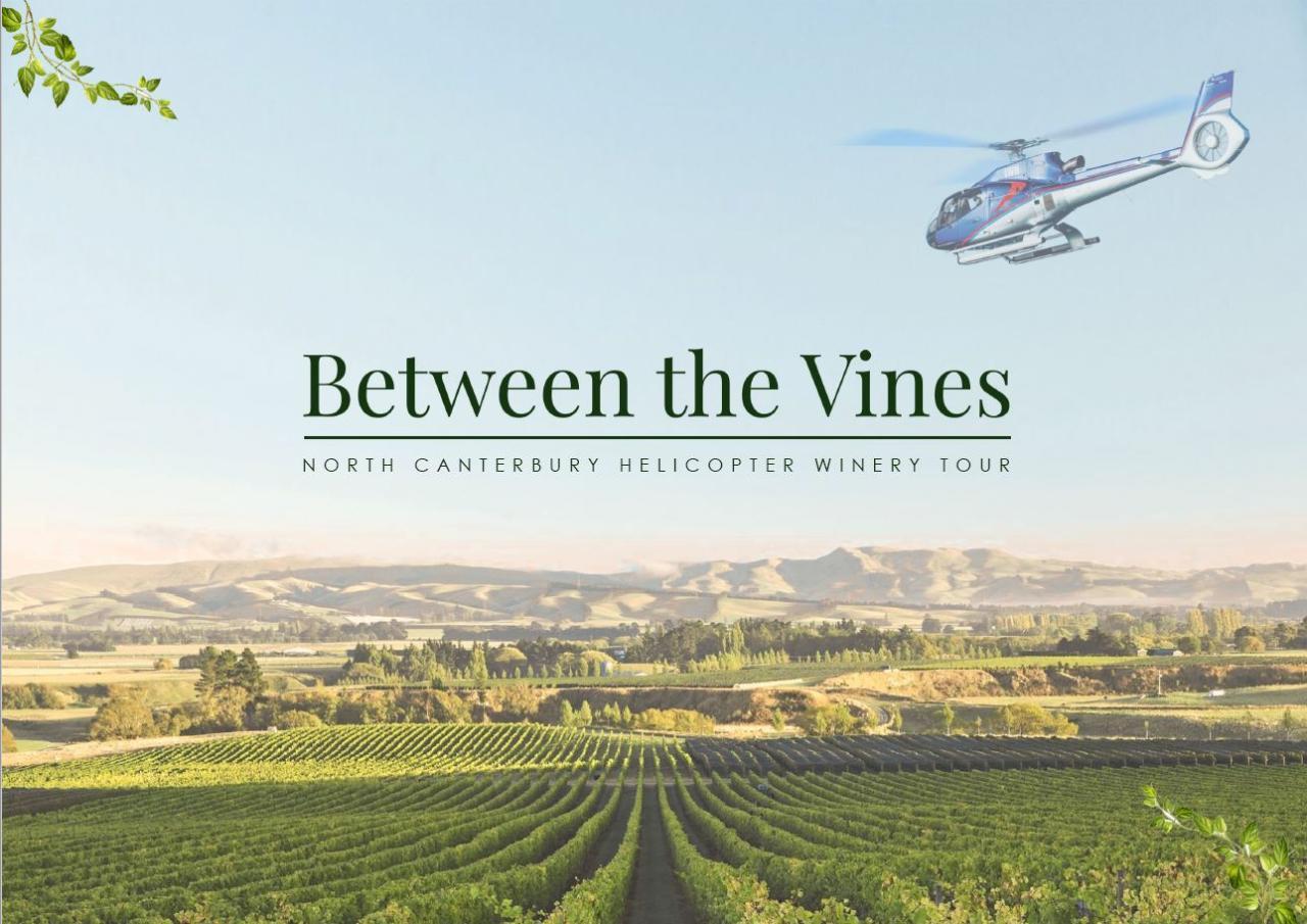 Between the Vines - North Canterbury