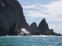 Pacific Island Cruise