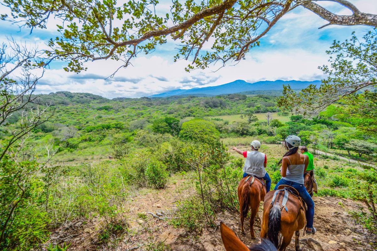 One Day Adventure Pass @ Vida Aventura Nature Park