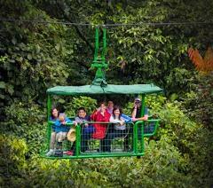 Rain Forest Aerial Tram