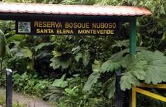 Santa Elena Reserve Tour