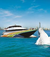 Groupon Whales- Adults $59 & Kids $39