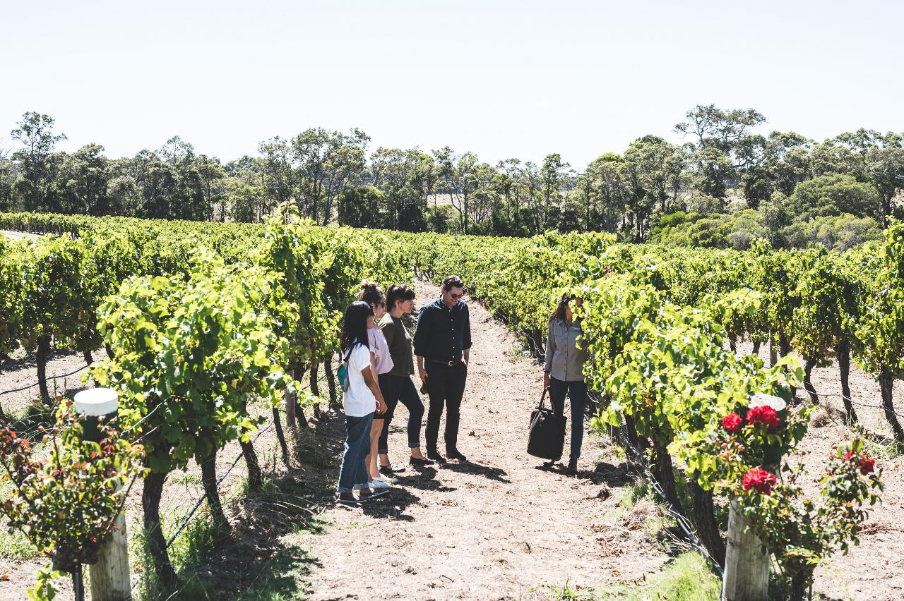 Voyager Estate Tour & 7-course Lunch