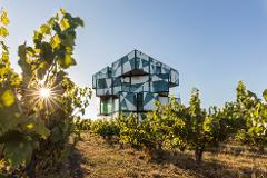 The d'Arenberg Cube General Admission