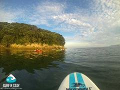Paddle to Donut Island Guided Tour