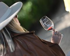 TWT 3 Winery Tour Reservation Request
