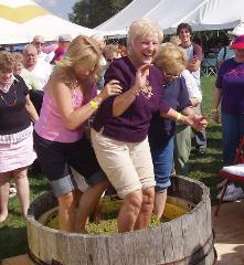 Grape Picking & Stomping Party
