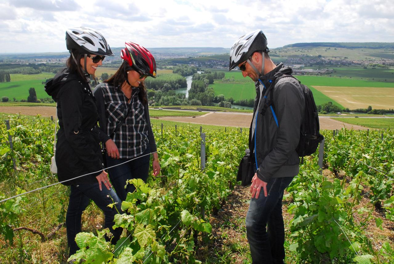 Champagne Region E-Bike Tour