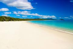 A Tropical Experience - Reef n Beyond Guided Holidays