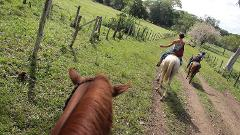 HALF DAY ORGANIC FARM HORSEBACK RIDE