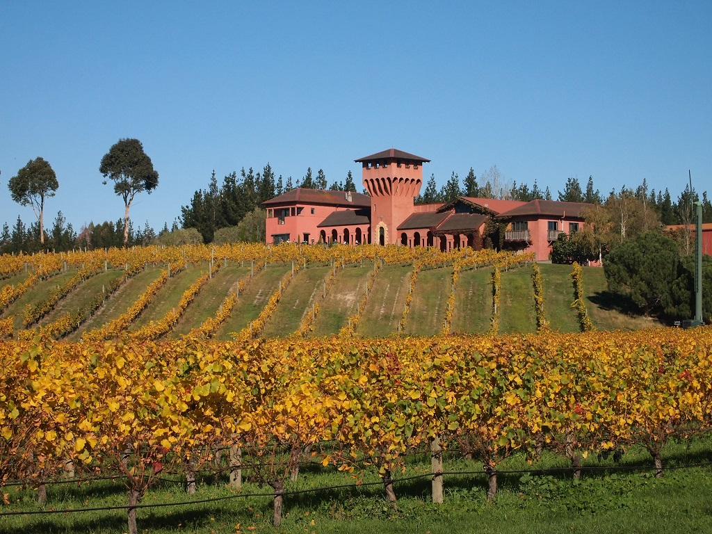 Private Tour: WINTER Wine and Scenic Delights Tour from Picton