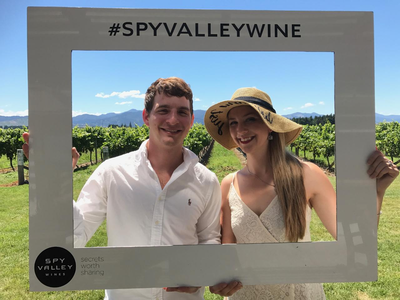 Private Wine Gourmet and Scenic Delights Tour from Blenheim 6 seats