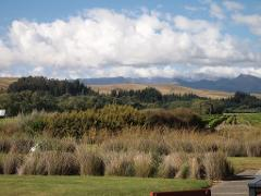 Private Tour: Winter Wine and Scenic Tour from Picton