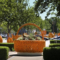 Griffith Fruit & Flower Festival