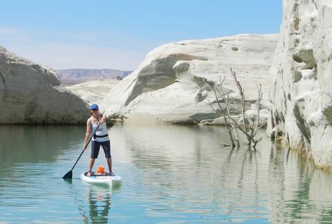 Paddleboard Rental- Multiple Days (3 or more days)