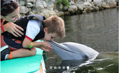 Kiss By A Dolphin