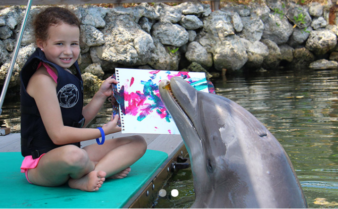 Painting with A Dolphin