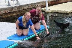 Special Needs/OMA Registration: Dolphin Dockside