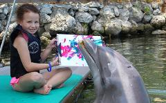 Special Needs/OMA Registration: Paint with a Dolphin