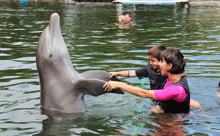 Special Needs/OMA Registration: Shallow Water Encounter
