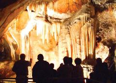 CDC Tours with Admission to Lucas Cave