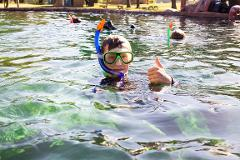 Purchase Gift Card: Tropical Snorkel plus Admission  & Socks Package (ages 12+)