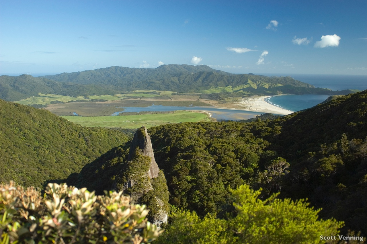 4 day Great Barrier Island Escape - Lodge Based