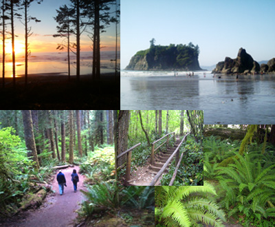 Olympic National Park Overnight Tour