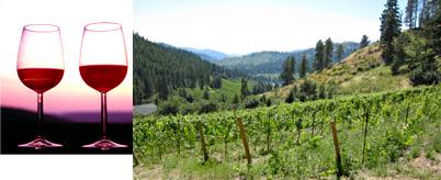 Vineyards, Stonehenge, and Northwest Secrets Tour
