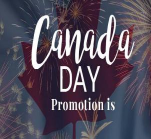 SPECIAL CANADA DAY: $99 - 1 HOUR FLIGHT SIMULATION + T-SHIRT