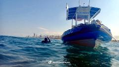 Private Dive Charter - Gold Coast Reef + Wreck Tour