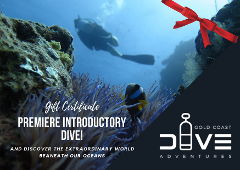Gift Card for Premiere Introductory Dive