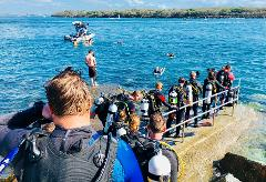 Gold Coast Seaway Dive Gear Hire & Delivery