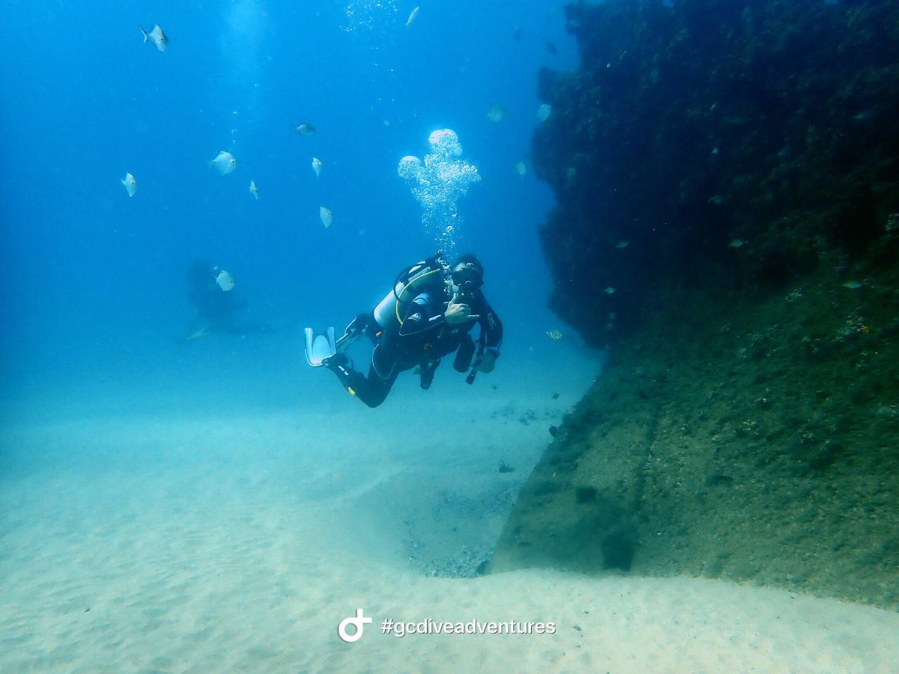 Advanced Triple Dive Southern Gold Coast
